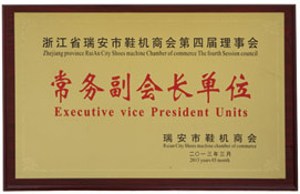 Vice president of Shoe Machinery Association unit